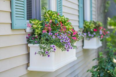 flower box on house
